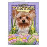 Galletas del huevo de Pascua - Yorkshire Terrier Felicitacion