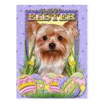 Galletas del huevo de Pascua - Yorkshire Terrier Postal