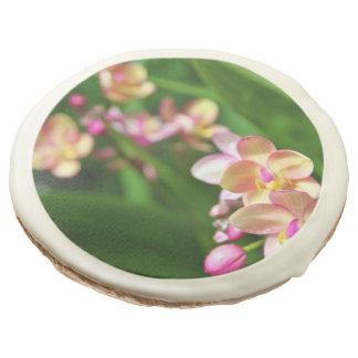 Galletas del Orchidaceae