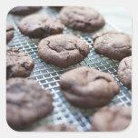 Galletas Gluten-libres recientemente cocidas del Pegatina Cuadrada