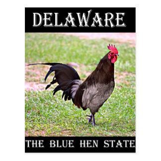 Gallina azul de Delaware (gallo) Postales