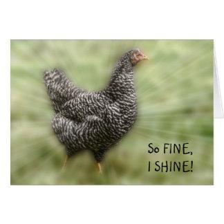 Gallina barrada jóvenes de Plymouth Rock del pollo Tarjeta De Felicitación