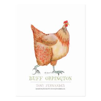 Gallina de color de ante de Orpington, fernandes Tarjetas Postales
