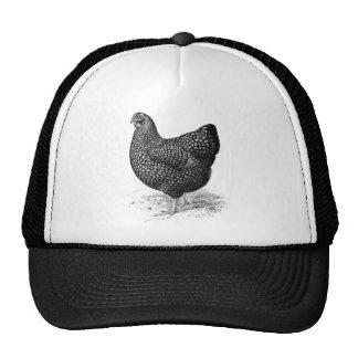 gallina de oro del wyandotte gorras de camionero