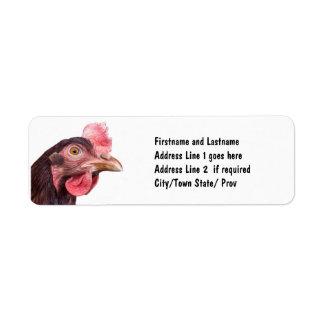 Gallina emplumada rojo de la capa del huevo del po etiquetas de remite