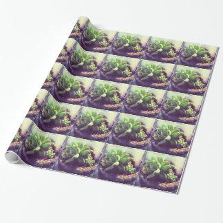 Gallina y planta de los polluelos papel de regalo