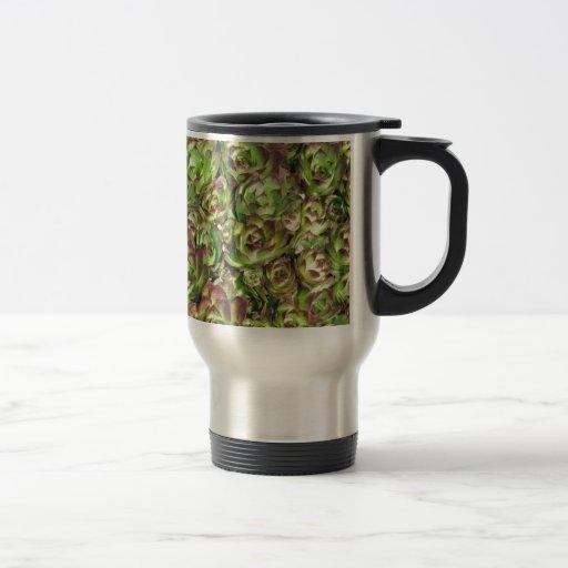 Gallina y polluelos (Crassulaceae) Taza De Café