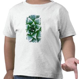 Gallina y polluelos suculentos con helada en el camisetas