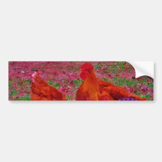 Gallinas de Brown en la hierba púrpura Pegatina Para Auto