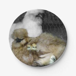 Gallinas de Silkie con los polluelos que miran a Plato De Papel 17,78 Cm