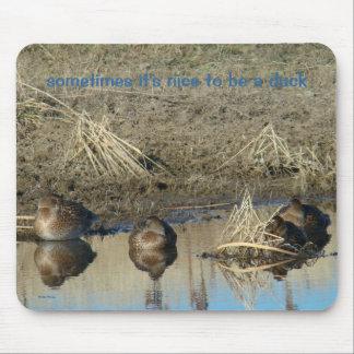 Gallinas del pato silvestre B0020 Tapete De Raton