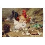 Gallinas roosting con sus pollos felicitación