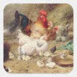 Gallinas roosting con sus pollos calcomanías cuadradass