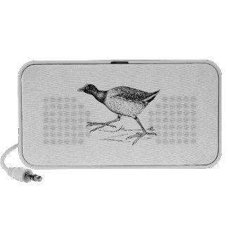 Gallinule Bird Drawing Travelling Speaker