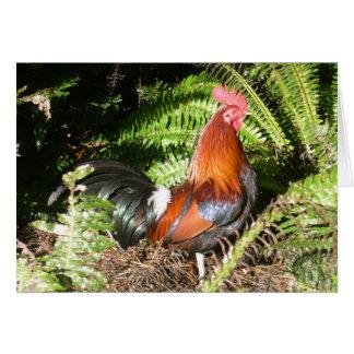 Gallo - aves de selva roja tarjeta de felicitación