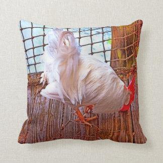 gallo blanco en hdr del muelle cojín decorativo