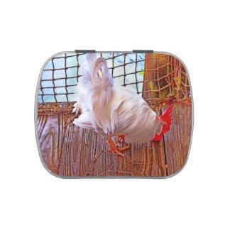 gallo blanco en hdr del muelle latas de dulces