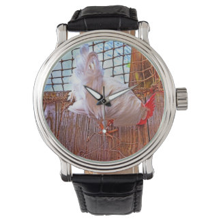 gallo blanco en hdr del muelle reloj