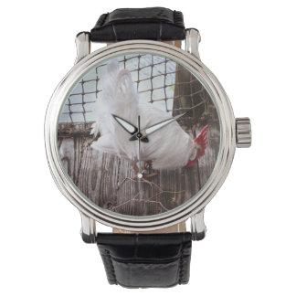 gallo blanco en muelle relojes de mano