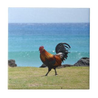 Gallo de Kauai Teja Cerámica