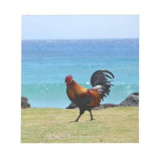 Gallo de Kauai Bloc
