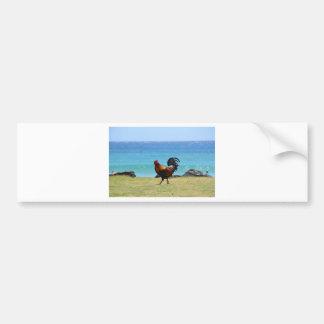 Gallo de Kauai Pegatina De Parachoque