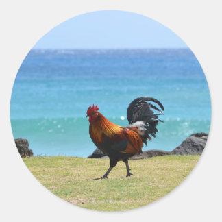 Gallo de Kauai Pegatina Redonda