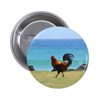 Gallo de Kauai Pin Redondo 5 Cm