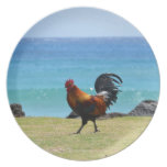 Gallo de Kauai Platos De Comidas