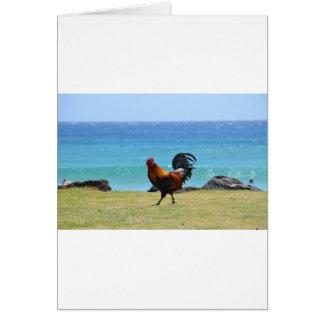 Gallo de Kauai Felicitaciones