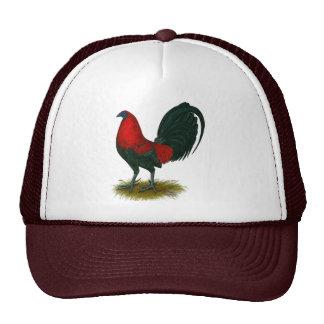Gallo de pelea americano:  Rojo de Brown Gorra