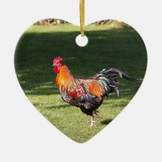 Gallo Ornamente De Reyes