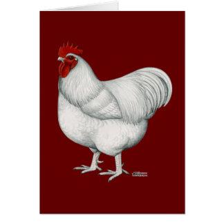 Gallo del blanco de Orpington Tarjetón