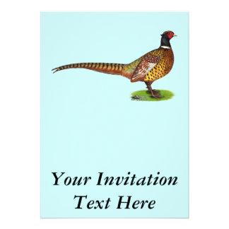 Gallo del faisán de Ringneck Comunicado Personalizado