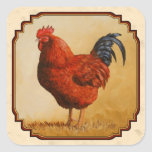 Gallo del rojo de Rhode Island Calcomanías Cuadradas