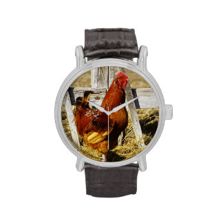 Gallo del rojo de Rhode Island Relojes De Mano