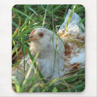 Gallo en el prado de heno mouse pad