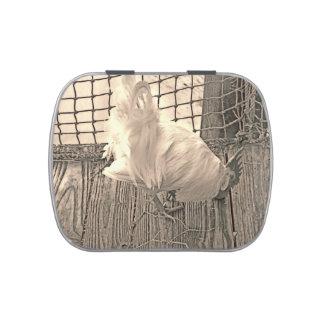 gallo en imagen del pájaro de la sepia del muelle frascos de caramelos