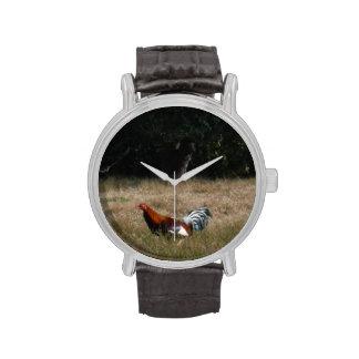 """Gallo en la foto de la granja de Sandy Closs.  """"gr Reloj De Mano"""