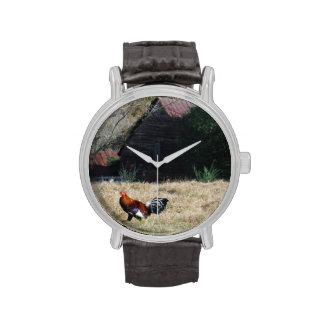 Gallo en la foto de la granja de Sandy Closs. Reloj De Mano