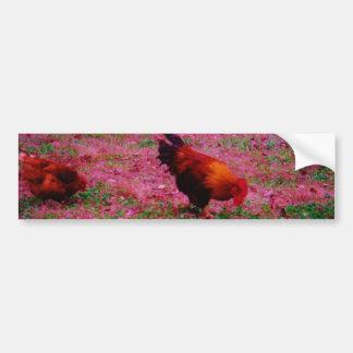 Gallo en la hierba púrpura pegatina para auto
