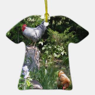 Gallo en los jardines ornamente de reyes