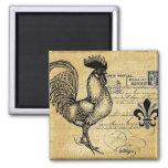 Gallo francés del vintage en la arpillera iman de nevera
