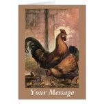 Gallo, gallina de Brown y polluelos rojos del bebé Tarjetas
