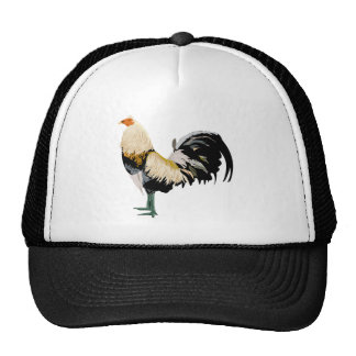 gallo gorra