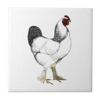 Gallo ligero de Brahma - pollo elegante del vintag Azulejo Cuadrado Pequeño