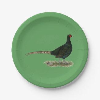 Gallo negro del faisán platos de papel