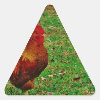Gallo que hace frente a la derecha pegatina triangular