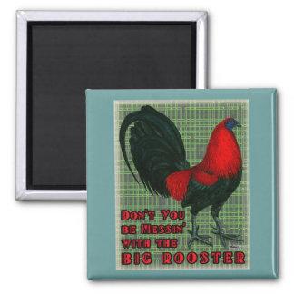 Gallo rojo grande imán cuadrado