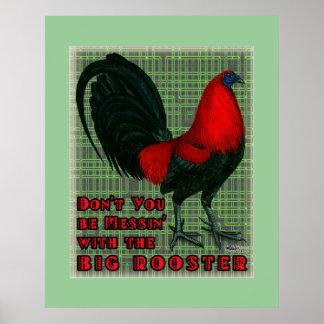 Gallo rojo grande póster